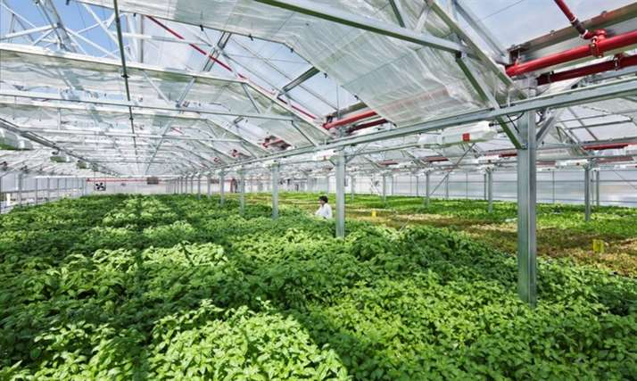 Method-Chicago-Gotham-Greens-worlds-largest-greenhouse-1020x610