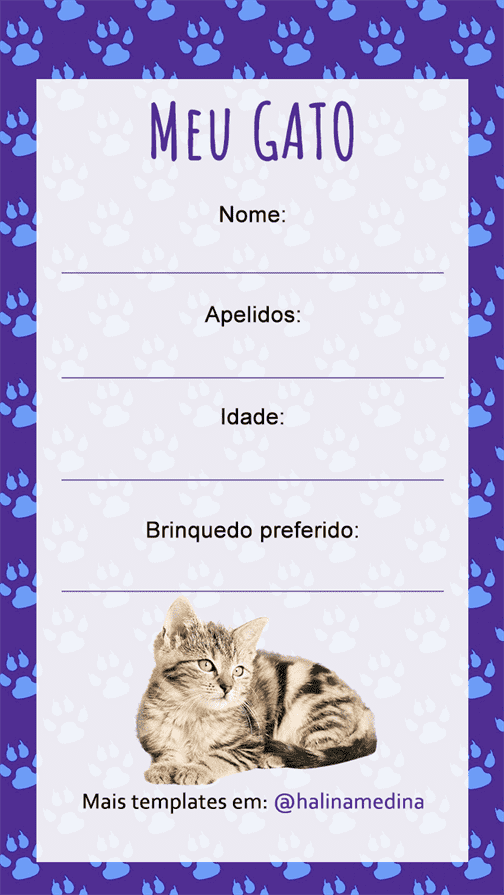 instagram-template-quiz-gato